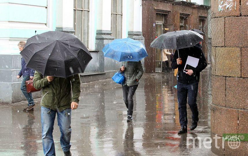 В конце недели в московский регион придут морозы. Фото Василий Кузьмичёнок