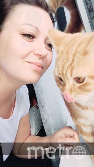 Ольга Головина ... кот- Аль Блюз Пифагор.