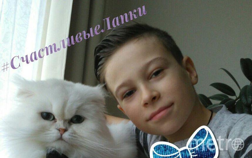 На фото мой сын Панферов Александр (11 лет) и наш любимый котик Вениамин (1 годик). Фото Панферова Екатерина