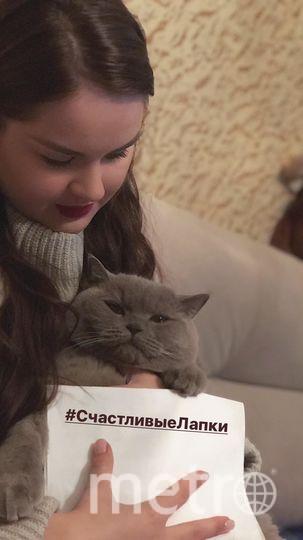 Елизавета Андреева, кот Кузя.