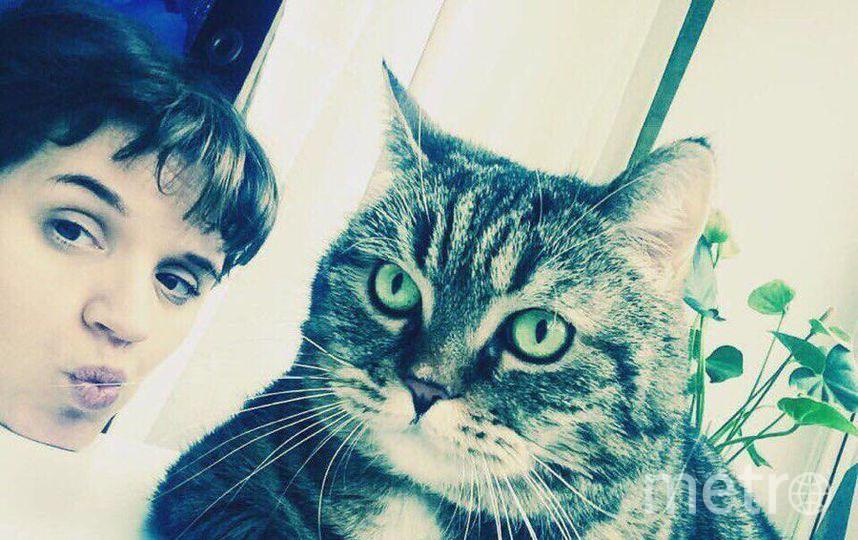 Кошка Буся. Фото Платонова Маргарита