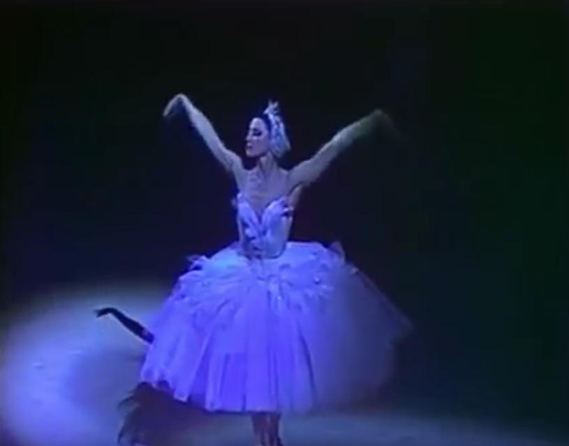 """Майя Плисецкая, """"Умирающий лебедь"""". Фото Скриншот Youtube"""