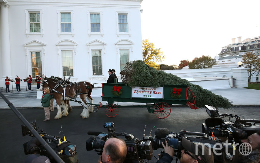 Встреча ёлки в Белом доме. Фото Getty