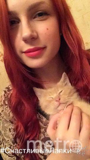 Валерия Медведева. Кличка котика--Вася.