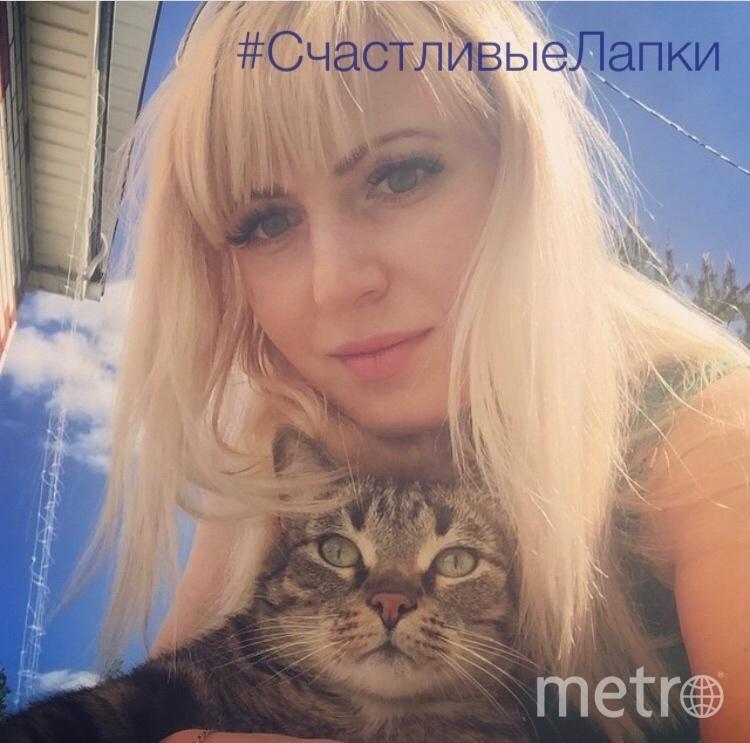 Меня зовут Шевцова Елена и мой котик Бакс! Баксик! Ему 12 лет.