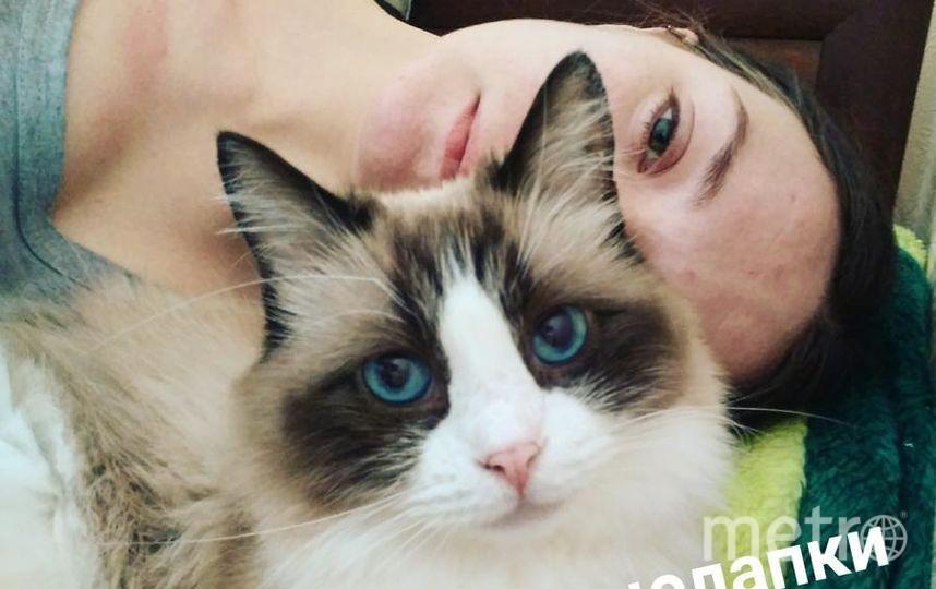 Кулешова Елена и кошка Пуша.