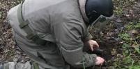 Появились фото найденного в Горелово немецкого снаряда