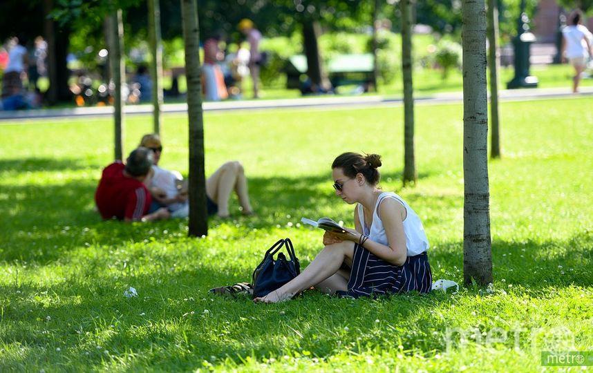Бесплатный Wi-Fi появится в 12 парках и 70 музеях Москвы. Фото Василий Кузьмичёнок