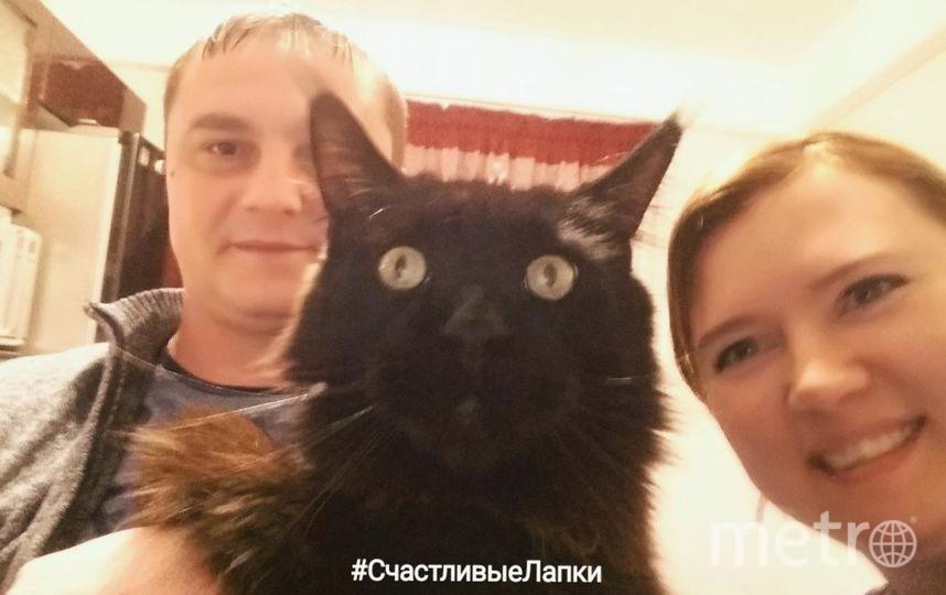 Предлагаю фото на конкурс. На фото я Марина Петрова, мой муж Сергей Петров и шикарный котик - мейнкун Филипп.