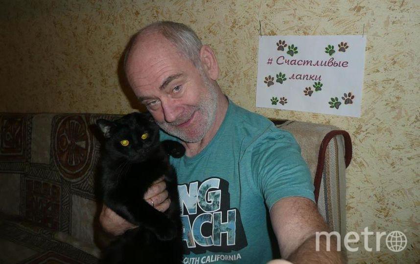 Это мой любимчик кот Бонни! Фото Михаил Басов