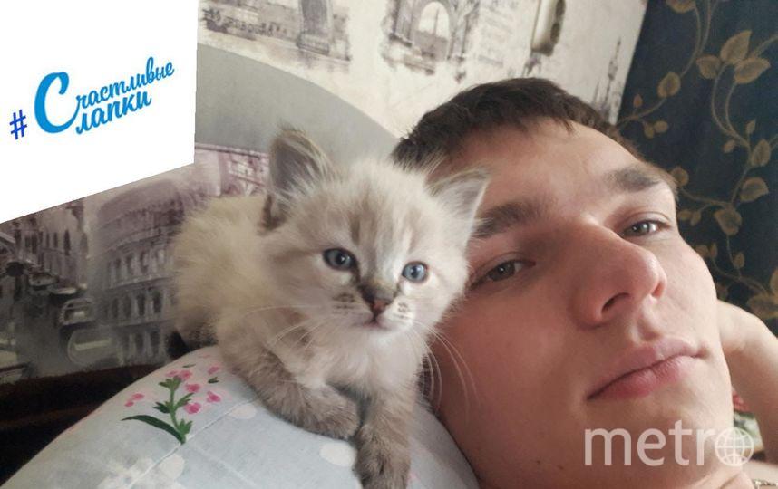 Филатов Александр. кличка котика: Тимон.