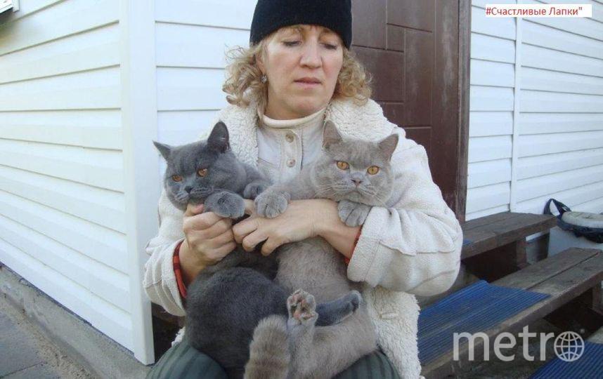 На фото Марина с котами Тошей и Семой. Фото Фролов Константин Владимирович.