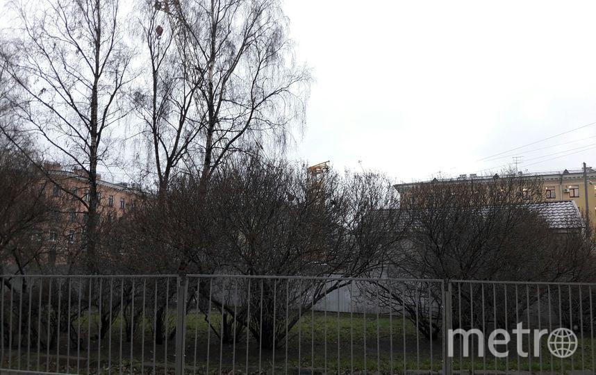 "На месте стройки храма Рождества Христова на Песках. Фото Софья Сажнева, ""Metro"""