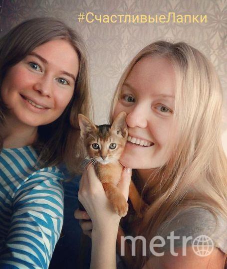 """Меня зовут Марина, я """"крестная мама"""" котенка Алисы. Направляю фото со счастливыми лапками Алисы. На фото Алису держит любимая хозяйка Маша!"""