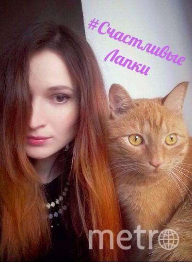 Кличка кота - Марсяша. Фото Полина Фомина