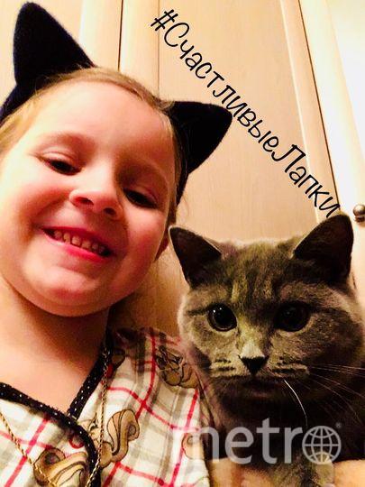 Ганичева Наталья и кошка Стелла.