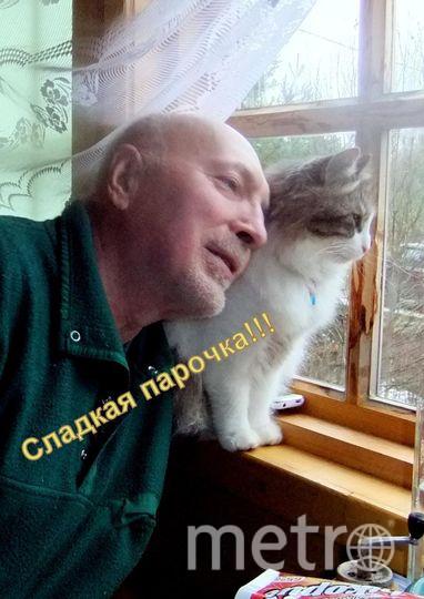 """Это наш """"найденыш"""" Марсик. Он хороший охотник(приносит в дом змей, мышей,птиц, лягушек..), однажды принес ласку.  Даже глядя в окно(сидя с хозяином) и то -  уже охотится. Я - Марсик. Хозяин - Анатолий Пугач."""