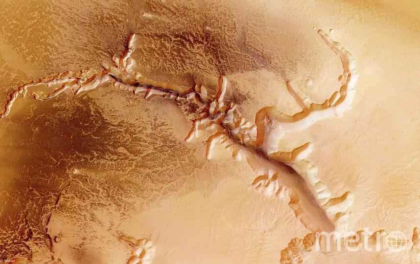 NASA готовит спецмиссию для поиска жизни наМарсе