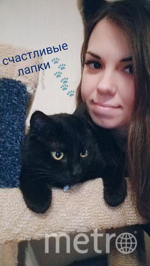 Николаева Анна Юрьевна. Котик Маркус.