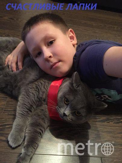 На фото мой сынуля Соловьев Марк и наш любимый питомец МАРСЕЛЬ.