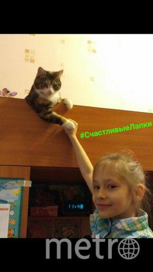 На фотографии моя дочь, Екатерина с нашей любимецей Мирославой (Мирка).