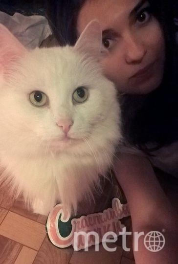 Имя: Ноябрина Васильева  Питомец: Кошка Соня.