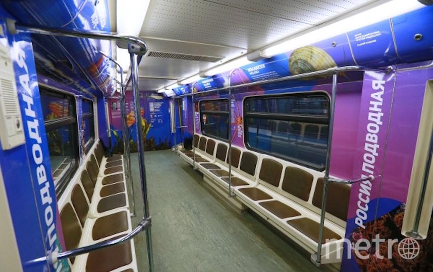 """Поезд """"Год экологии"""". Фото РИА Новости"""