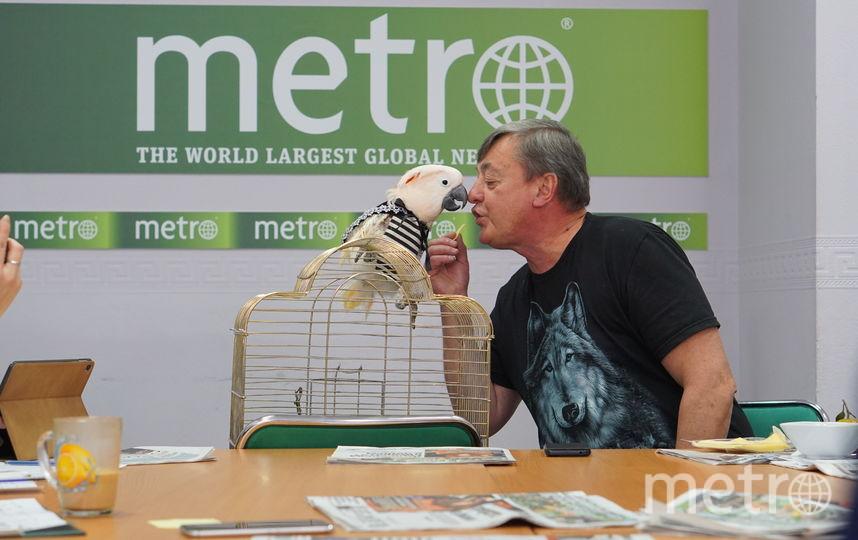 """Говорящий какаду Савелий побывал в редакции Metro. Фото Павел Киреев, """"Metro"""""""