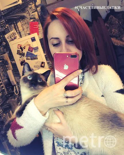 Мою кошечку зовут Таисия, или просто Тася. Она необычной породы - тонкинез.Моя Тася - самая счастливая кошка на свете! Ведь у неё есть своя комната со всевозможными игрушками, лежанками, беговым колесом и СОБСТВЕННЫМ ОКНОМ БЕЗ ЦВЕТОВ!! Фото Баранова Анна Игоревна,