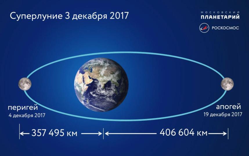 Скриншот facebook.com/tvoyplanetary/.