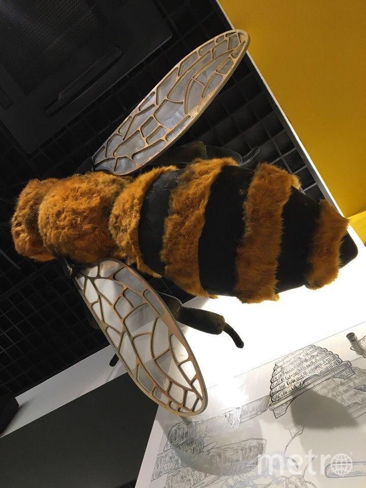 Пчёлы в павильоне на ВДНХ. Фото Дарья Буянова.