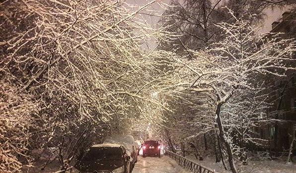 Заснеженный Санкт-Петербург. Фото Скриншот Instagram: @evablium