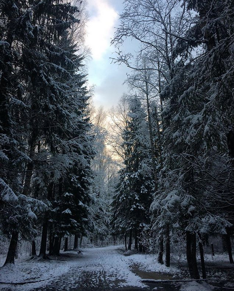 Заснеженный Санкт-Петербург. Фото Скриншот Instagram: @polina__soboleva