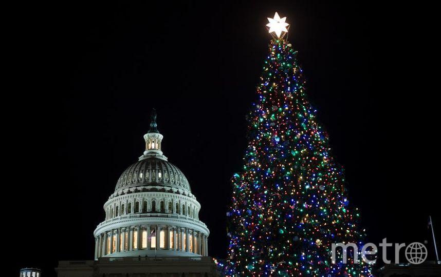 У Капитолия зажгли огни на огромной елке. Фото Getty
