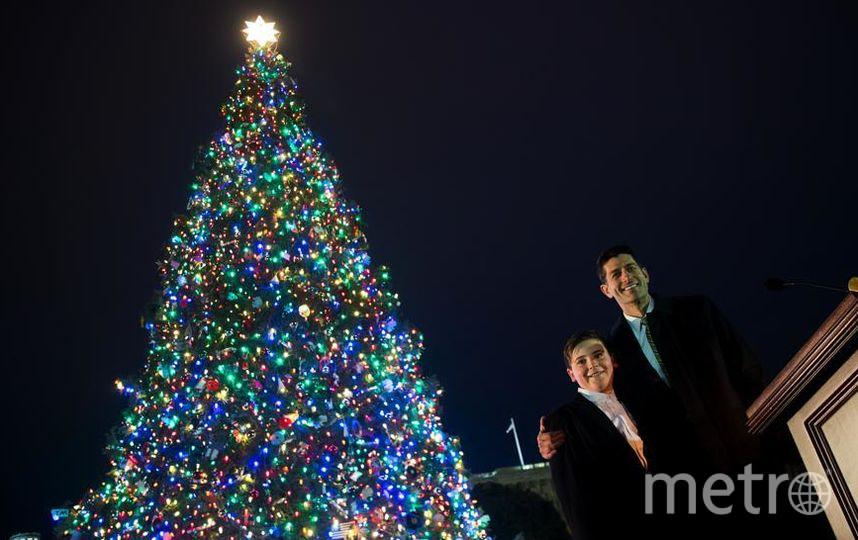 У Капитолия зажгли огни на огромной елке. Пол Райан и Ридли Брандмайр. Фото Getty