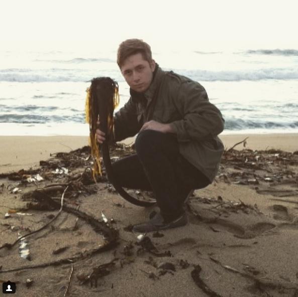 """""""Морского змея"""" находят и в других точках мира. Фото Скриншот Instagram: @_3_56"""