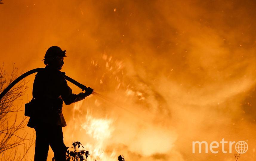 ВЛос-Анджелесе введен режимЧП из-за высочайшей опасности лесных пожаров