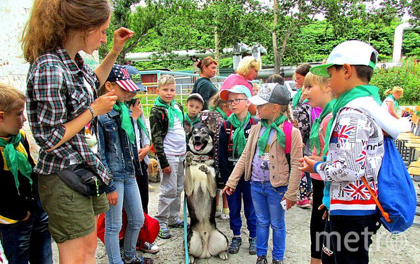 Каспер после выступления в детском лагере. Фото из личного архива Анны Машенковой