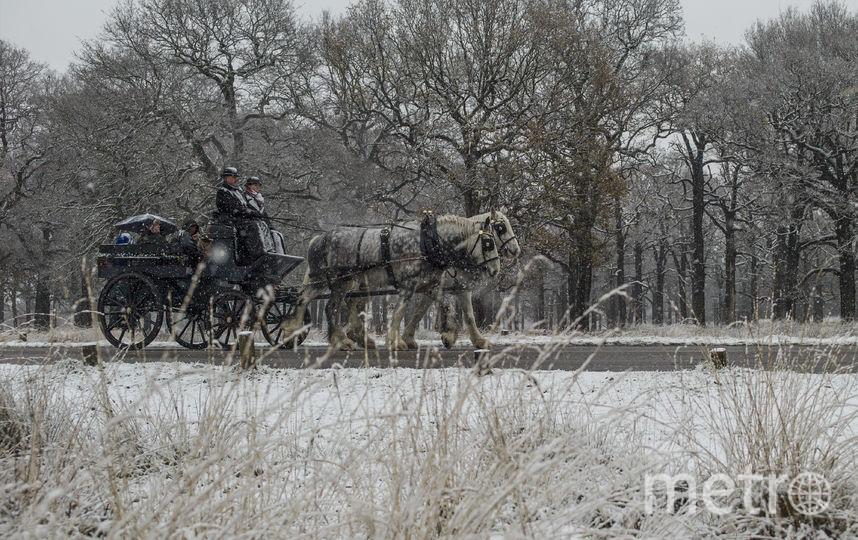 Снегопады обрушились на Европу. Фото Getty