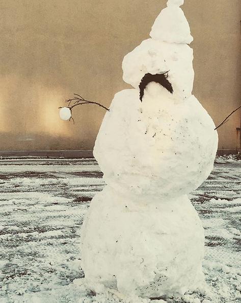 Самые странные и забавные снеговики в Instagram: Фото. Фото Скриншот Instagram: @mydhilichowdary
