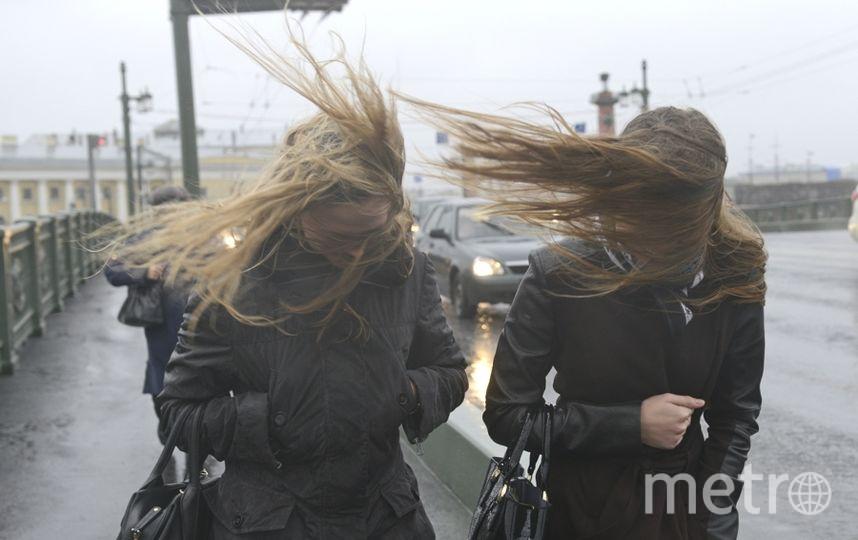 Мокрый снег, сильный ветер игололедица прогнозируются вПетербурге вовторник