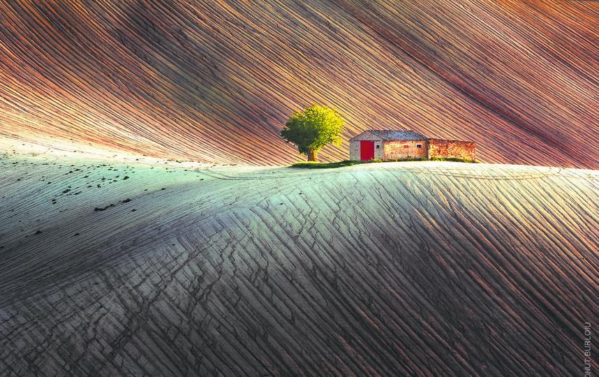 «Душа земли». Ионут Бурлою (Италия). Категория: «Цвет». Фото Предоставлено организаторами