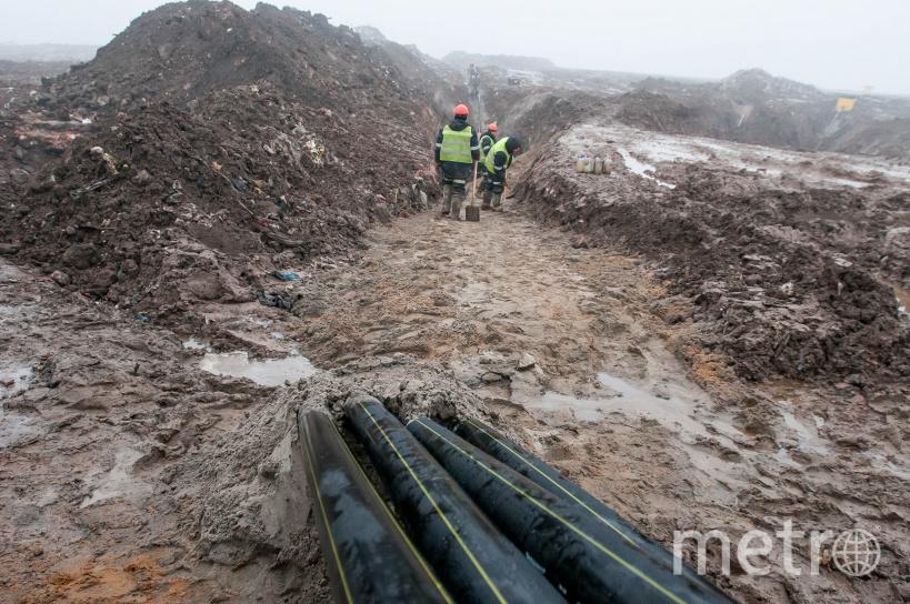 Газ от процессов гниения собирают из скважин с помощью труб, которые сейчас устанав ливают по всему полигону. Фото пресс-служба правительства Московской области