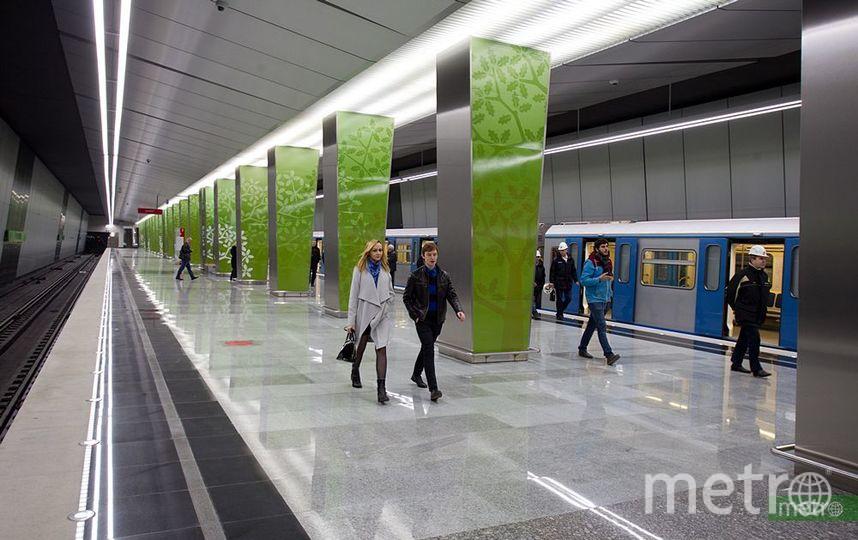 Перед Новым годом метро Москвы запустит три праздничных поезда. Фото Василий Кузьмичёнок
