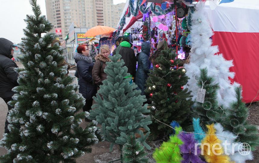 """В Петербурге открываются ёлочные базары. Фото """"Metro"""""""