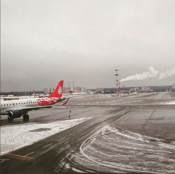 Аэропорт Внуково. Фото Скриншот instagram.com/catherine_404/?hl=ru