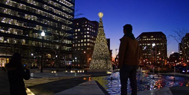 Рождественская ёлка в центре Вашингтона, США.