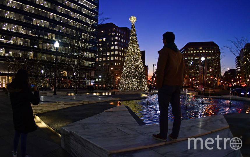 Рождественская ёлка в центре Вашингтона, США. Фото AFP