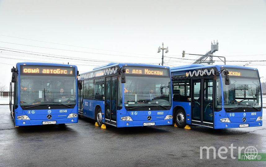 Столичные автобусы. Фото Василий Кузьмичёнок