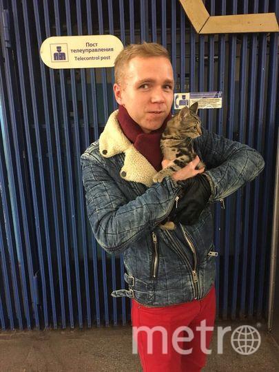 Анатолий забрал котенка.
